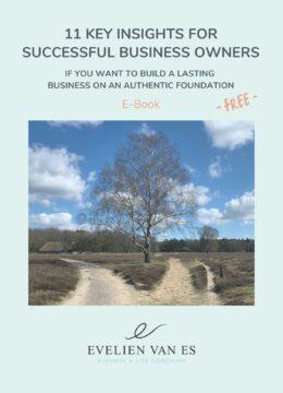 E-Book Cover 11 Key Insights